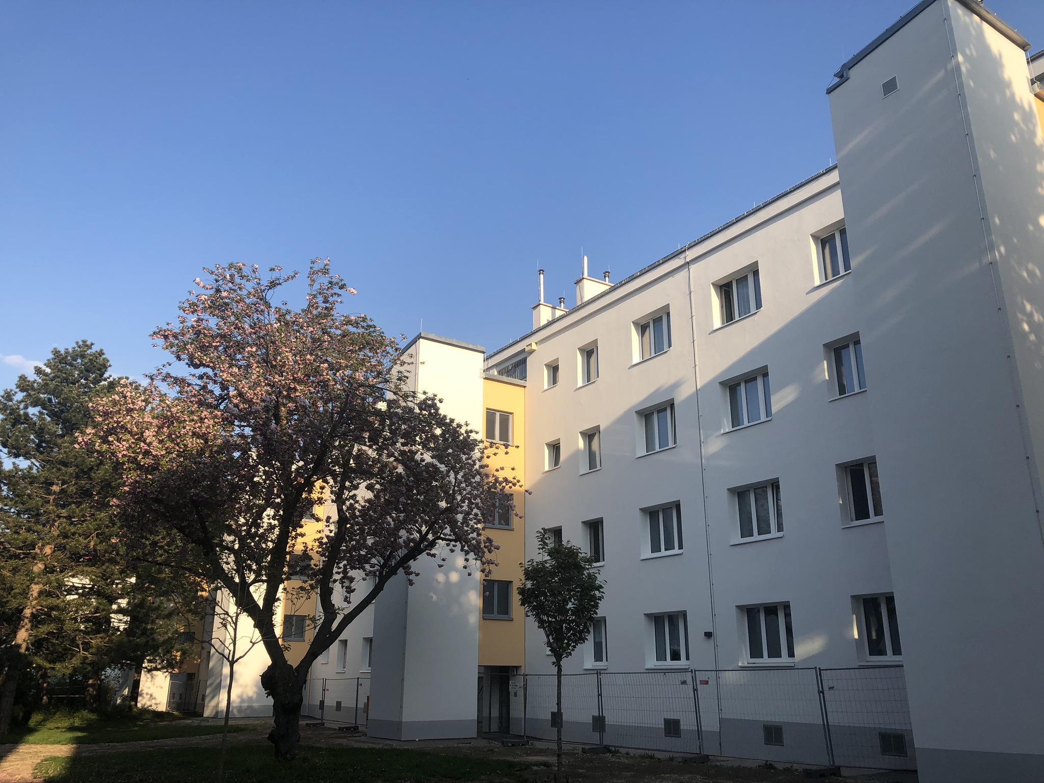 Markhof-Gasse-13