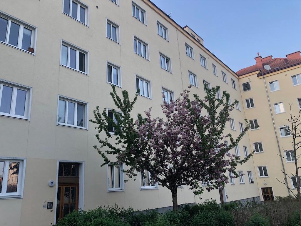 ringboeckstrasse00006